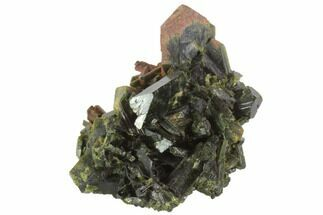 "Buy 1.4"" Epidote Crystal Cluster - Pakistan - #91948"