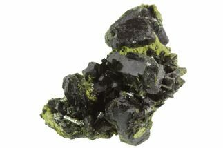 "Lustrous 1.6"" Epidote Crystal Cluster - Pakistan For Sale, #91952"