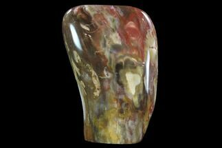 "6.4"" Tall, Polished Petrified Wood Freeform Sculpture For Sale, #92366"
