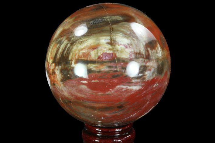 "Bargain, 3.7"" Colorful Petrified Wood Sphere - Madagascar"