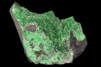"1.95"" Druzy Green Uvarovite (Garnet Group) - Russia For Sale, #93437"