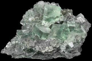 Fluorite - Fossils For Sale - #93657