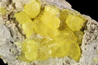 "Buy 3.1"" Sulfur Crystals & Selenite on Matrix - Italy - #93652"