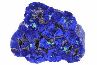 "Buy 1.42"" Vivid Blue, Cut/Polished Azurite Nodule - Siberia - #94561"