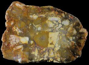 Quartz var. Jasper - Fossils For Sale - #95211