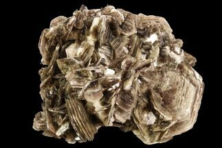 "3.1"" Muscovite & White Albite Crystal Association - Brazil For Sale, #95573"