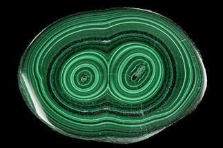 "Buy .97"" Polished Malachite Stalactite Slice - Congo - #94462"