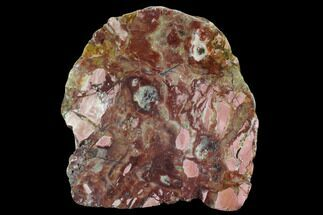 "Buy 7.4"" Polished, Brecciated Pink Opal Section - Western Australia - #96307"