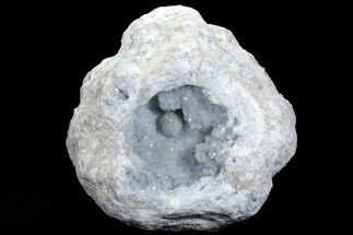 "Buy 13.8"" Blue Celestine (Celestite) Crystal Geode (67 lbs) - #74680"
