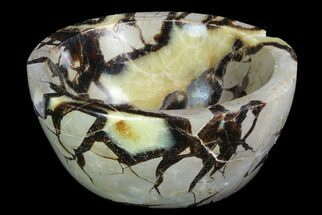Septarian - Fossils For Sale - #98274
