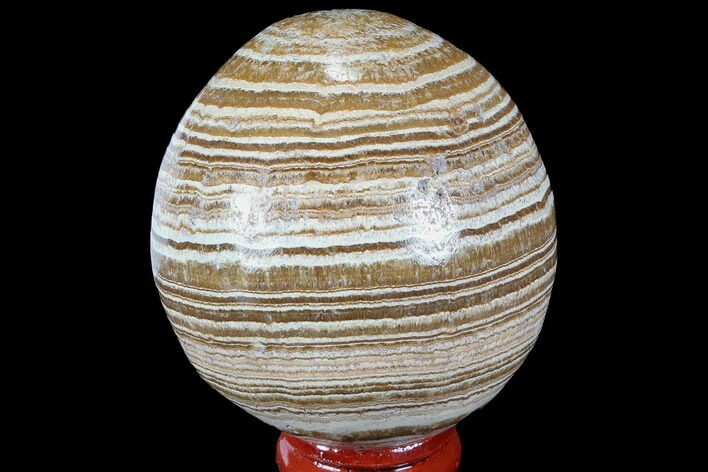 "2.2"" Polished, Banded Aragonite Egg - Morocco"