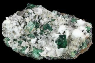 Fluorite  - Fossils For Sale - #99459