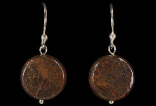 Buy Polished Fossil Dinosaur Bone (Gembone) Earrings - #93349
