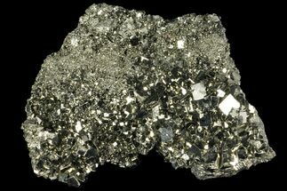 "3.8"" Gleaming, Cubic Pyrite Crystal Cluster - Peru For Sale, #99152"