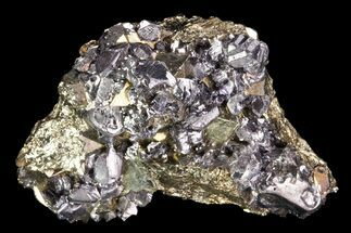 Galena & Pyrite - Fossils For Sale - #99687