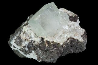 Apophyllite  - Fossils For Sale - #100158