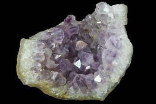 "3.1"" Purple Amethyst Crystal Cluster - India For Sale, #100184"