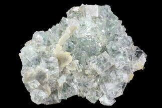 Fluorite & Quartz - Fossils For Sale - #100737