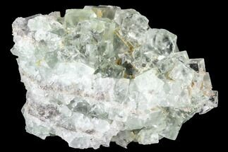 Fluorite & Quartz - Fossils For Sale - #100746