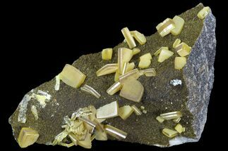 Wulfenite - Fossils For Sale - #103491