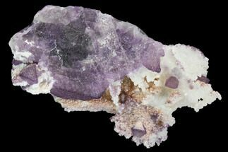 "Buy 2.2"" Purple Fluorite on Quartz Epimorphs - Arizona - #103546"