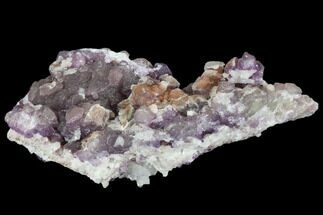 Fluorite, Quartz & Calcite - Fossils For Sale - #103554