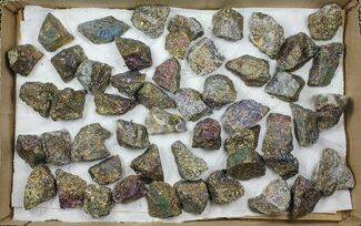 Wholesale Flat: 50 Pieces Peacock Ore (Chalcopyrite) - Morocco For Sale, #103826