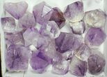 "Wholesale Lot: 1.5-3"" Amethyst Points - 50 Pieces  - #105348-2"