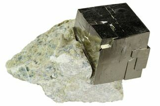 Pyrite - Fossils For Sale - #105408