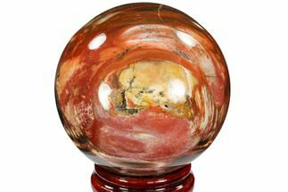 "Buy 3.4"" Colorful Petrified Wood Sphere - Madagascar - #106981"