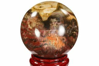 "4.2"" Colorful Petrified Wood Sphere - Madagascar For Sale, #106991"