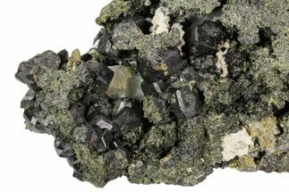 "2.8"" Black Andradite (Melanite) Garnet Cluster - Morocco For Sale, #107912"
