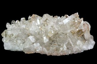 "11.7"" Clear Quartz Crystal Cluster - Brazil For Sale, #80936"