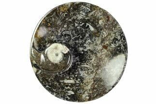 "4.3"" Round Fossil Goniatite Dish - Morocco For Sale, #108020"
