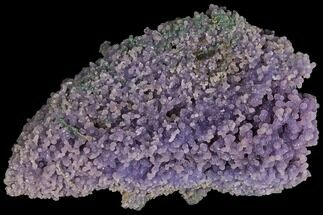 "Buy 4.5"" Purple, Druzy, Botryoidal Grape Agate - Indonesia - #109423"