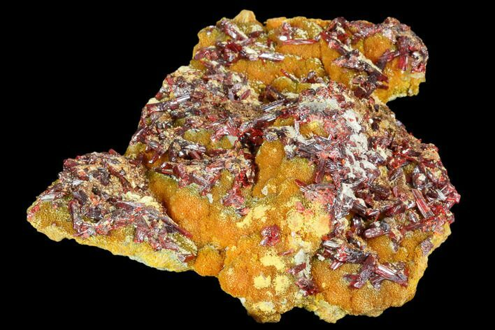 "3.5"" Realgar Crystals on Yellow-Orange Orpiment - Peru"