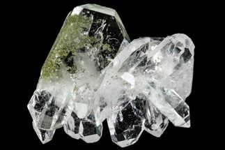 "Buy 1.35"" Faden Quartz with Chlorite Inclusions - Pakistan - #111271"