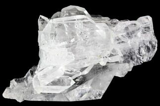 "Buy 2.35"" Faden Quartz Crystal Cluster - Pakistan - #111301"