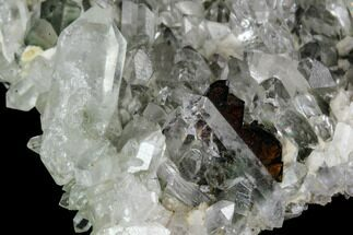 Brookite, Chlorite & Quartz - Fossils For Sale - #111330