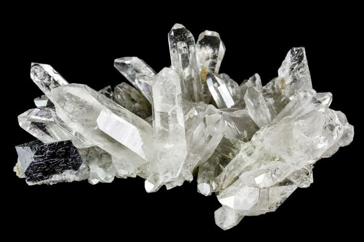 "1.5"" Anatase Crystal and Quartz Association - Norway"