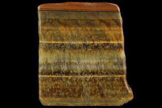 Tiger's eye - Fossils For Sale - #112302
