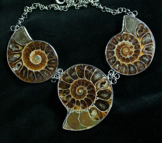 Triple Ammonite Necklace - 110 Million Years Old