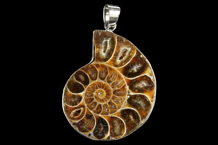 "1.4"" Fossil Ammonite Pendant - 110 Million Years Old"