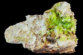Pyromorphite - Fossils For Sale - #112389