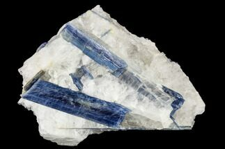 "5.5"" Vibrant Blue Kyanite Crystals In Quartz - Brazil For Sale, #113489"