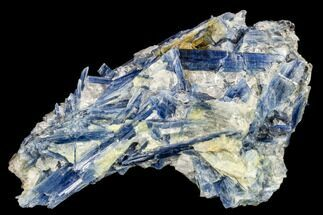 Kyanite & Quartz - Fossils For Sale - #113493