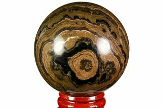"Buy 2.2"" Polished Stromatolite (Greysonia) Sphere - Bolivia - #113560"