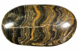 "Buy 2.65"" Polished Stromatolite (Greysonia) Pebble - Bolivia - #113521"