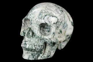 "Buy 4.9"" Realistic, Polished Tree Agate Skull  - #116698"