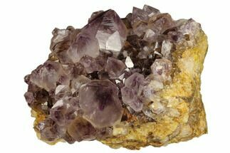 "3.7"" Wide, Amethyst Crystal Cluster - South Africa For Sale, #115391"